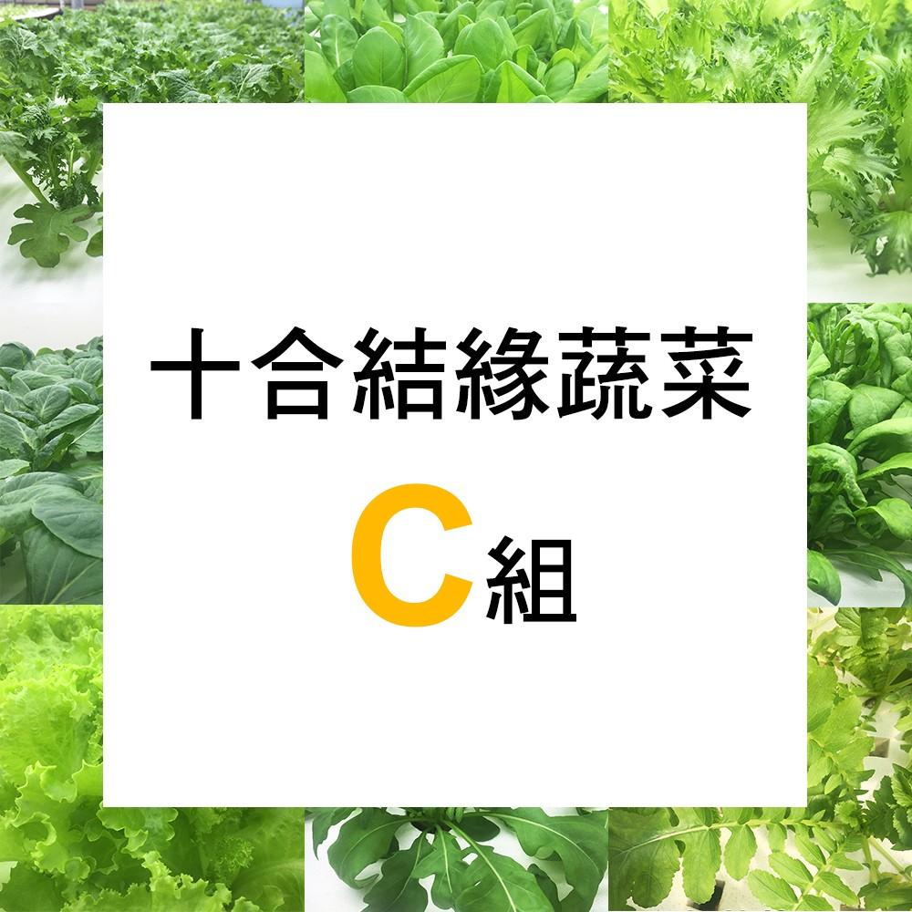 【微笑農夫】十合結緣蔬菜C 組