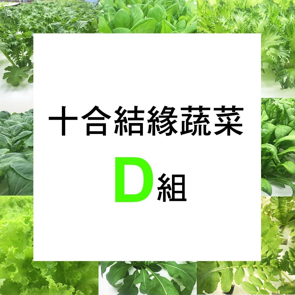 【微笑農夫】十合結緣蔬菜D 組
