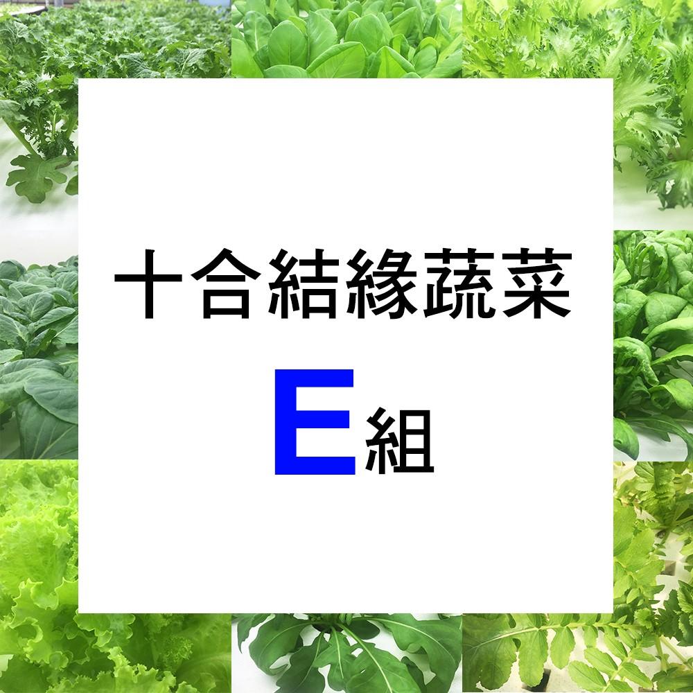 【微笑農夫】十合結緣蔬菜E 組