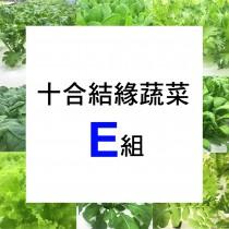 十合結緣蔬菜E 組